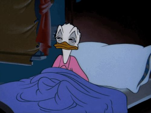 donald duck bed